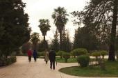 Tirana_Tag (6)