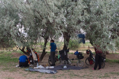Siesta unter Olivenbäumen