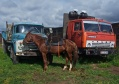 Fortbewegungsmittel in Kirgistan