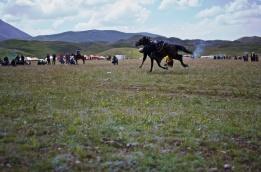 Kirgistan (14)