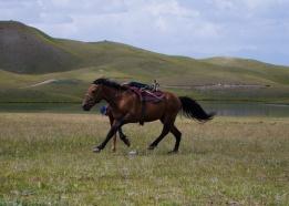 Kirgistan (15)