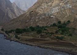 Afghanistan - Ochsenpflug