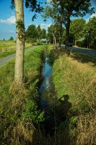 Graben bei Delmenhorst - weder breit noch tief