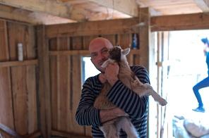 Schaf- und Ziegenfarm
