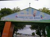 Hasen auf der Wasen
