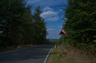Plauen (14)