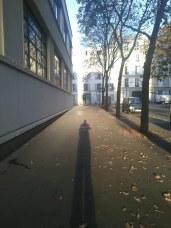 Lange Schatten am Morgen